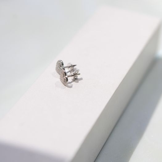 Срібні сережки Одкровення